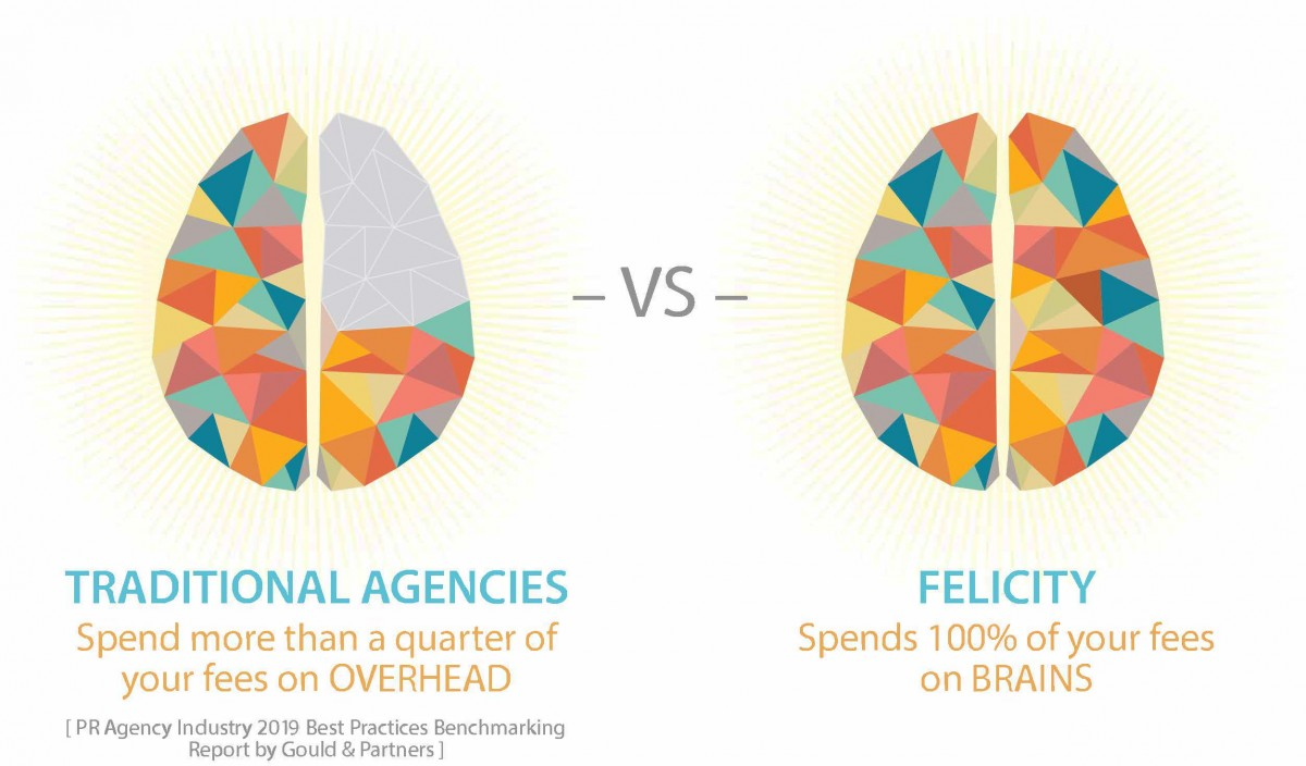 Comparison of two brains showing 100% of fees spent on brains not bricks at Felicity
